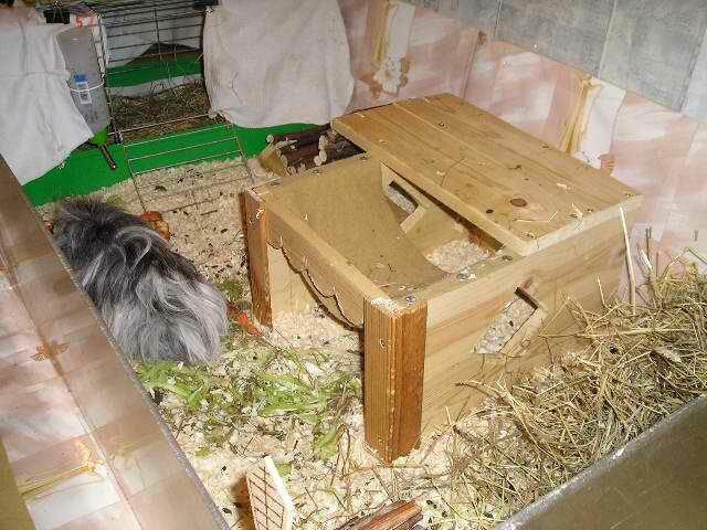 Домик для свинки своими руками